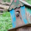 住宅ローンが払えない!3つの項目に当てはまったら借り換えを検討すべき|あさイチ