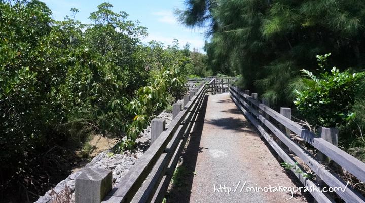 マングローブ林遊歩道
